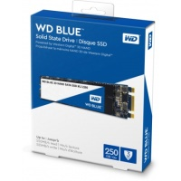 WD BLUE 250GB  550/525MB M.2 Sata3 WDS250G2B0B M.2 SSD HDD