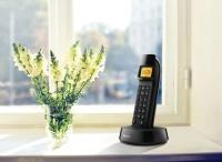 PHILIPS D1401B SİYAH DECT TELSİZ TELEFON